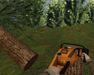 Cutting trees in VR. Picture from Virtual Human Interaction Lab (Stanford University)