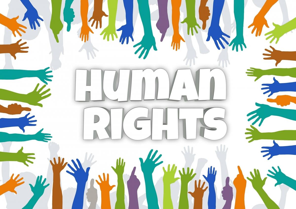 Grundrechte Und Menschenrechte Demokratiewebstatt At