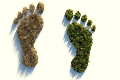 Umweltfreundlich oder nicht? Unser ökologische Fußabdruck. Quelle: ColiN00B via pixabay (https://pixabay.com/illustrations/ecological-footprint-4123696/, Lizenz: https://pixabay.com/de/service/license/).