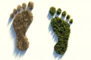 Umweltfreundlich oder nicht? Unser ökologische Fußabdruck. Quelle: ColiN00B via pixabay (https://pixabay.com/illustrations/ecological-footprint-4123696/, Lizenz: https://pixabay.com/de/service/license/).